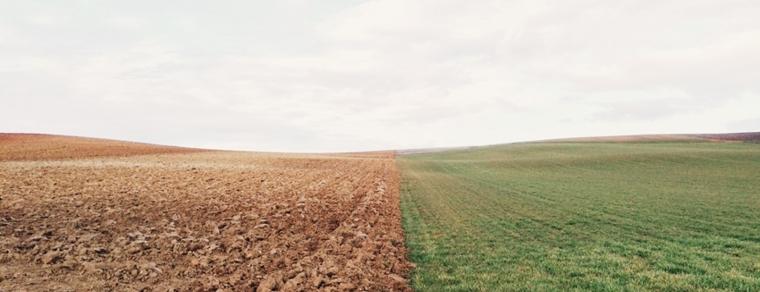 tierra-verde-y-tierra-desertificada.jpg
